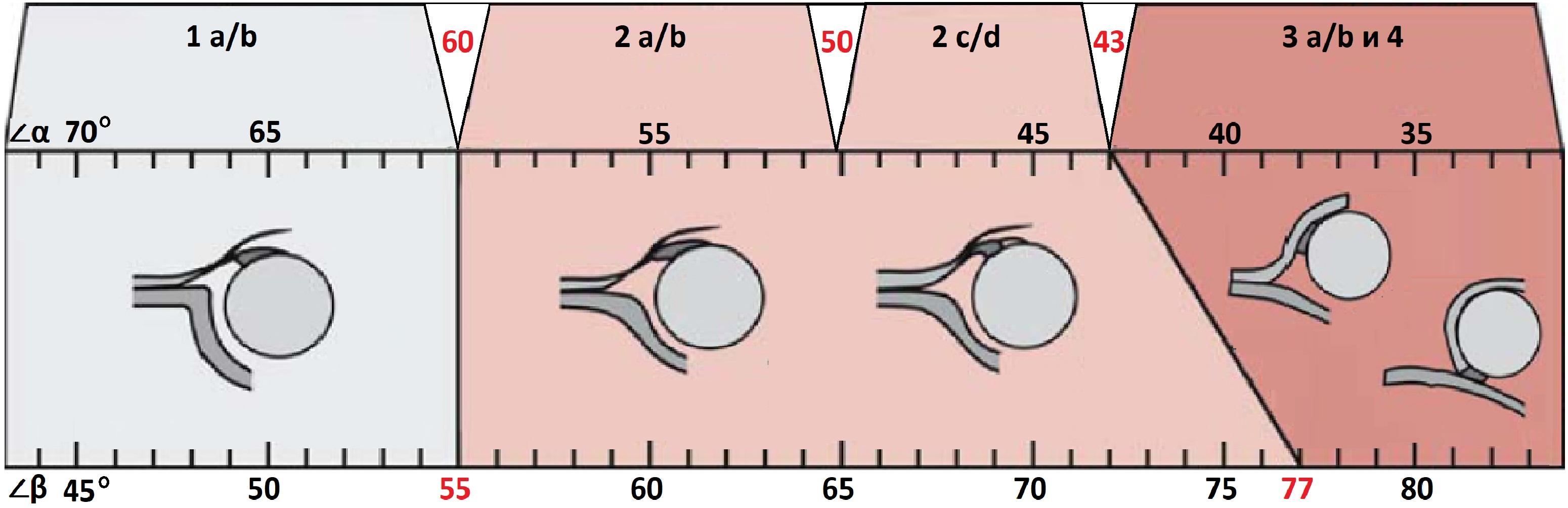 Изображение - Протоколы узи суставов у детей Sonogramma-3